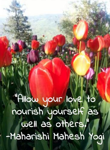 allow-your-love-to-nourish-maharishi-yogi