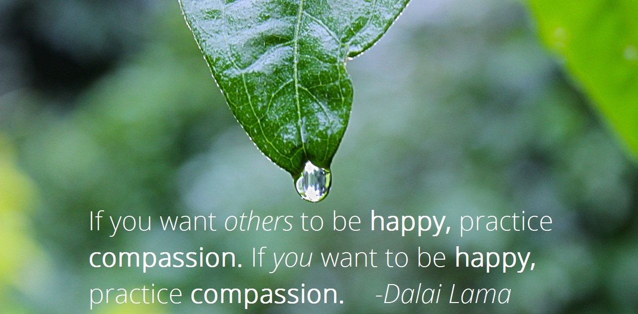 inner-path-spiritual-store-compassion-happiness-dalai-lama-quote