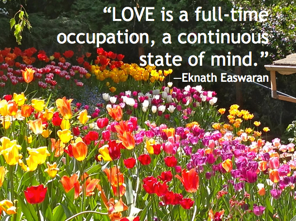 love-full-time-occupation-eknath-easwaran